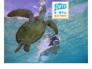 【宮古島】地域共通クーポンOK!☆遭遇率100%☆ウミガメとニモとシュノーケリング@写真・バスタオル付!
