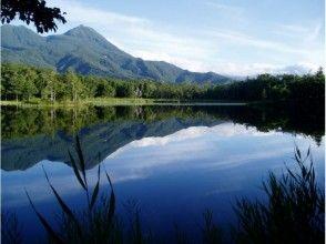 知床自然体験1日コース~豊かな森をじっくり楽しむ♪~の画像