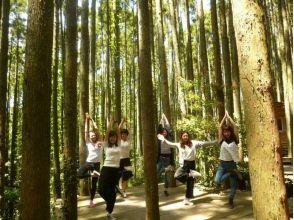 【Chiba · Minamiboso】 Yoga experience at Satoyama! Picture of Jyurin Yoga (Stretch) & Walk & Pizza making (1 day)