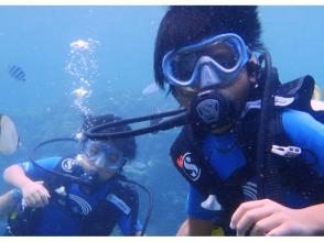 【沖縄・青の洞窟】完全貸切!家族みんなで楽しもうファミリー体験ダイビング!写真動画無料プレゼント!