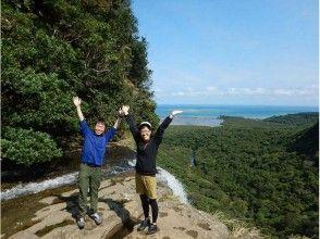 【沖縄・石垣】マングローブカヌー&ピナイサーラ滝上滝壺トレッキング