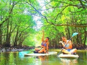 [沖繩西表島]讓我們紅樹SUP /獨木舟和隱蔽的瀑布遊覽和星沙子的海灘上玩