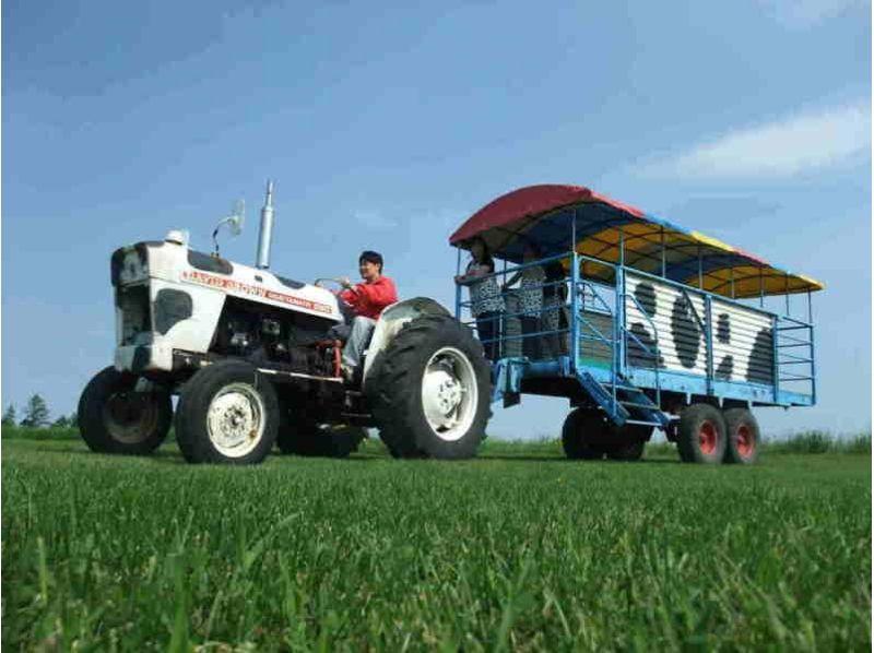 [北海道摩週附近]黃油決策和拖拉機,Esayari場(約30分鐘)の紹介画像
