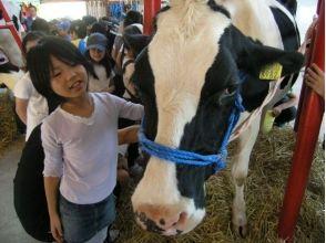 [北海道摩週接近]半天牧場體驗★奶牛農場的教育計劃(含午餐)