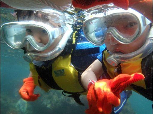 【静岡・伊豆】泳げなくても大丈夫!5歳~OK!体験シュノーケリングの紹介画像