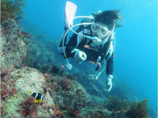 【静岡・伊豆】丁寧なサポートで安心! 海の生き物に出会える体験ダイビング!の紹介画像