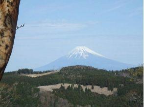 【静岡・伊豆】壮大なジオパークを目指せ! 海を育む豊かな森をトレッキングの画像