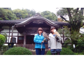 【東京・国分寺】 ふくろうと歩く、国分寺お散歩体験  スタンダードコースの画像