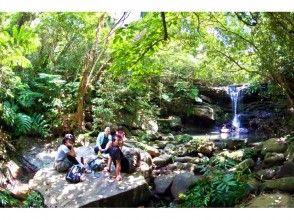 【沖縄・石垣】ショートコース・クーラの滝楽々トレッキング