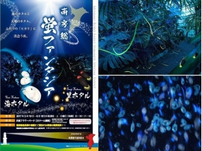 【Minamiboso】 Bus tour to meet sea fireflies and earth fireflies ~ Japanese breakfast with dinner included 【10016】