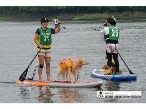 6/24(日)山中湖SUPerマラソン3km・ワンちゃんと一緒に!ドッグタンデムクラス(ボード自由)