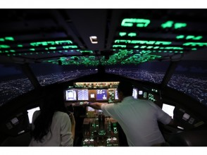 【Tokyo】 30 minutes Flight simulator experience ◆ day, evening, night · airport choice of flight course ◆ image
