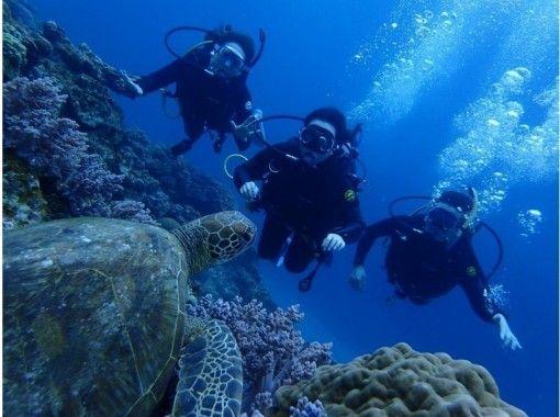 10月の沖縄旅行│海泳げる?気温と服装は?人気アクティビティ体験ツアーを徹底紹介!