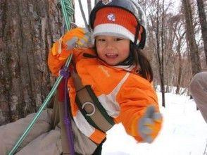 【北海道・十勝】サホロスキー場で木登り体験の画像