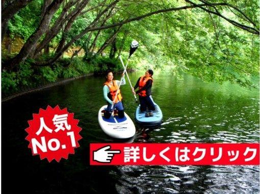 【長野・森の湖で爽快SUP】丁寧な初心者レッスンで人気!木崎湖SUPツアー(120分)