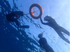 [伊豆八丈島]島以滿足八丈島的海龜,浮潛體驗計劃