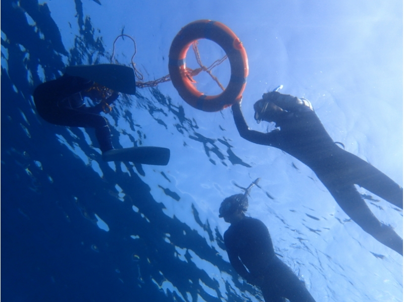 Izu Islands Hachijojima Island Snorkeling Experience Plan at