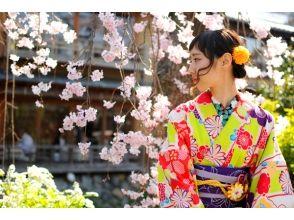 【京都・祇園】一日お手軽レンタル着物姫 ♪人気の「Missionプラン」の画像
