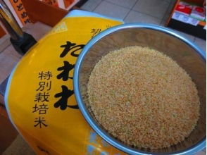 【Adult classroom】 Enzyme brown rice · rice milk · germinated brown rice more delicious and healthy! Brown rice classroom 【7163】