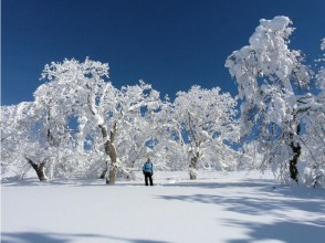 [Hokkaido Furano] image of Snow picnic to Primeval Forest (1 day private tour)