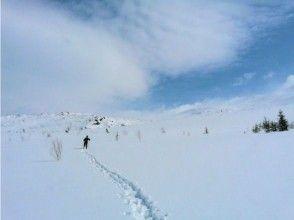 【北海道・富良野】スノーピクニック貸切ツアー(半日プラン)の画像