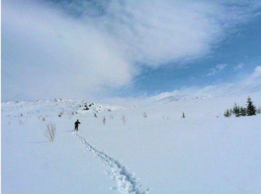 ◆GO TO 地域共通クーポン取扱店◆【北海道・富良野】ペットも一緒に1グループ完全プライベートツアー!スノーピクニック貸切半日プラン!
