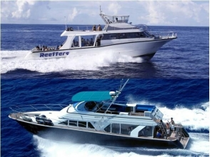 【Okinawa · Naha departure】 Enjoy the ocean of the night in Okinawa ♪ Private charter cruise (night cruise: 2 hours)