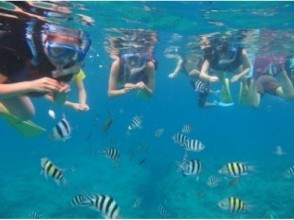 ★ From July to September reservation is here ★ 【Morning Course】 8:30 Gathering Chivisy Snorkeling Tour