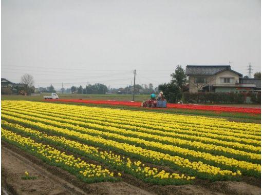 【富山 観光ツアー】となみ野を旅するガイドツアー