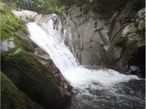 【静岡・伊豆・河津】伊豆の天然の渓流でキャニオニングしよう!の画像