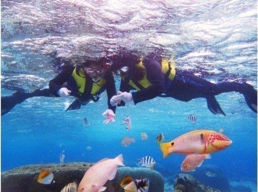 【沖縄・感動シュノーケル】サンゴ礁と熱帯魚の餌付け満喫!写真&動画無料♪ 沖縄人ガイド♪