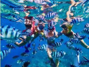 [오키나와 · 감동 · 스노클링] 산호초와 열대어 먹이주기 만끽! 인기 GoPro 사진 및 동영상 무료 ★ 격 레어! 지역 오키나와 사람 가이드 ★