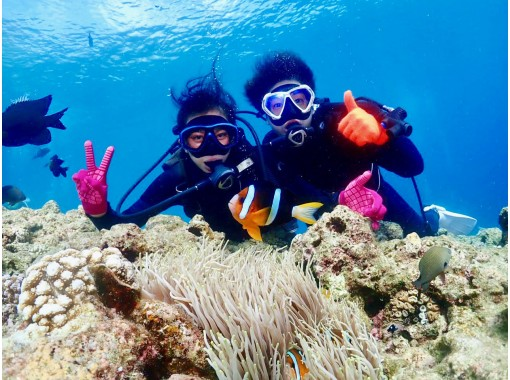 [Okinawa / Impressive / Experience diving] Enjoy feeding coral reefs and tropical fish! Completely chartered! Popular GoPro Photos & Videos Free ★ Super Rare! Local Okinawan Guide ★の紹介画像