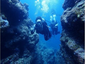 【Okinawa · diving license】 PADI EFR course! Challenge the lowest price in Okinawa! Okinawa lecturer ♪