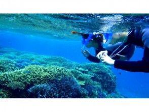 【沖縄・石垣島】幻の島上陸&熱帯魚シュノーケリング+マンタチャレンジコース(半日)の画像