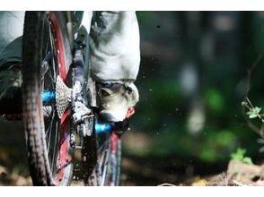【長野・白馬】MTBファミリーライドJr.ダウンヒル体験ツアーの画像