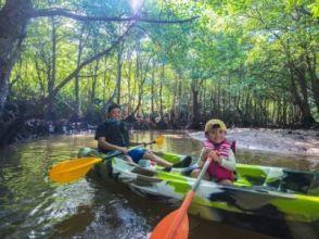【西表島/1天】親子遊!紅樹林 SUP / 獨木舟和星沙浮潛 [照片數據免費]