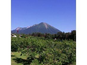 【鳥取・大山】ブルーベリー摘み取り食べ放題&ジャム作り体験プラン ♪