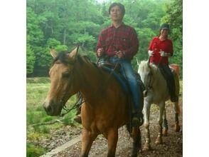 【兵庫・篠山】初心者森林浴外乗★白馬で森林を散歩の画像