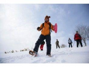 【北海道・札幌】これで安心スノーシュー入門!円山ハイキングお手軽半日コース(ガイド同行)の画像