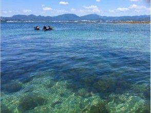 【早期割引・直前予約・グループ割引プランでお得に♪】初めての水中世界へ!気軽に感動が味わえる体験ダイの画像