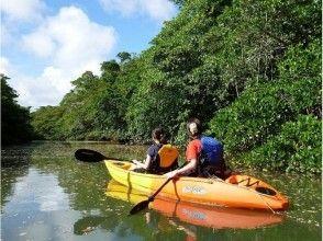 【沖縄・石垣島】当店一番人気のマングローブカヌー&ジャングル探検コース!(3時間)の画像
