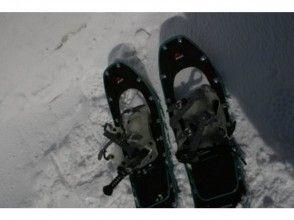 【北海道・札幌】お手軽な半日体験でメタボ予防を!スノーシュー旭山記念公園コース(ガイド同行)の画像