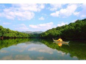 【沖縄・西表島】カヤック&ケイビング!鍾乳洞探検!西表島の大自然を満喫できる!写真・ランチ付き