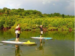 【沖縄・西表島】西表島の大自然を満喫できるSUP&トレッキングツアー!写真・ランチ付き