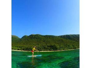 【沖縄・西表島】SUP&シャワークライミング!西表島の大自然を満喫できるツアー!写真・ランチ付きの画像