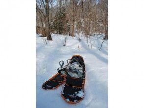 【北海道・札幌】毎年人気!スノーシューのんびり1日コース 北大苫小牧研究林ウォーキング(ガイド同行)の画像