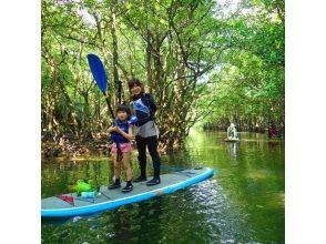 【沖縄・西表島】SUP&キャニオニング!西表島の大自然を満喫できるツアー!写真・ランチ付き