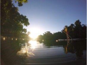【沖縄・西表島】早朝SUPマングローブクルージング!手軽に大自然を味わいましょう!写真付き!