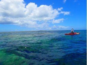 【沖縄・西表島】シーカヤック&シュノーケリング!西表島の大自然を満喫できるツアー!写真・ランチ付き